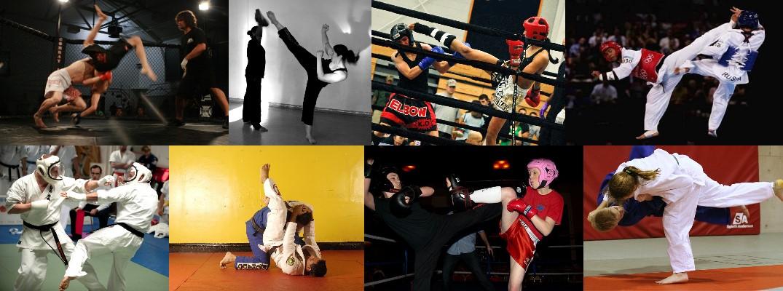Sport da combattimento presso Spazioforma Biella