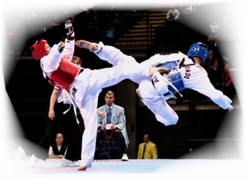 taekwondo a biella presso palestra spazioforma