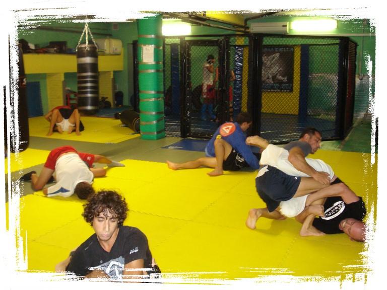 Brazilian Jiu Jitsu, MMA, Grappling Biella